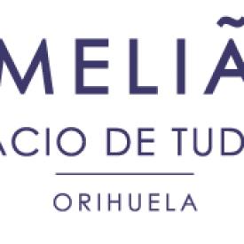 Meliá Palacio de Tudemir